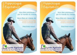 thumbnail of Flyers Equit-Hippo